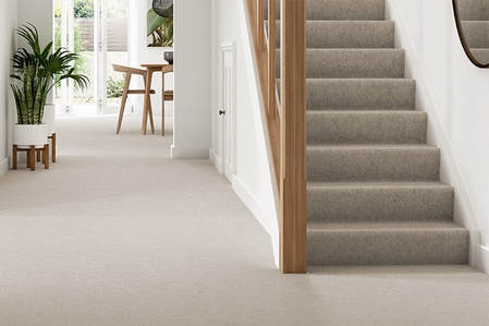 southlake-steam-cleaning-carpets-stairs-carpetcleaning (2)